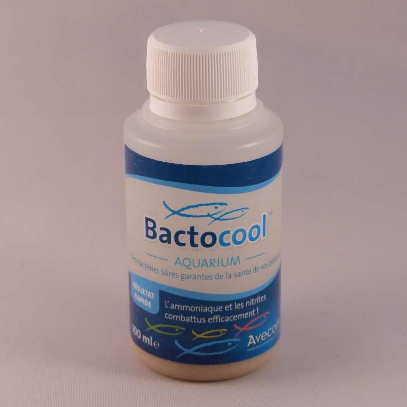 BACTOCOOL 100ML
