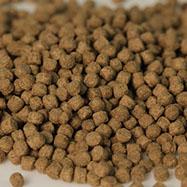 Wheatgerm germe de blé 3mm 3,4kg 8000ml